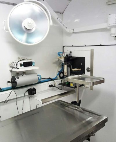 Surgical table: Mobile Pet Hospital in Rennselaer